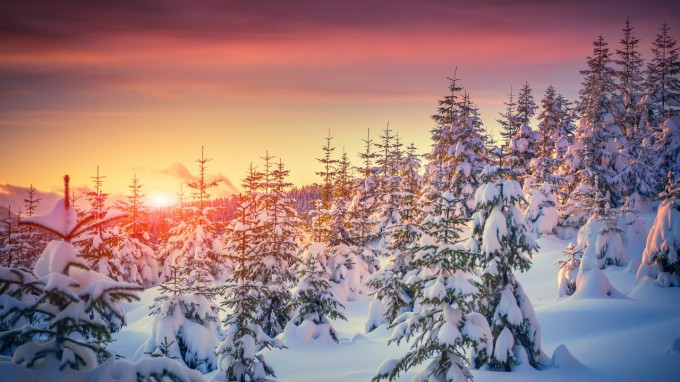 couche_de_soleil_rose_rouge_et_hivernale