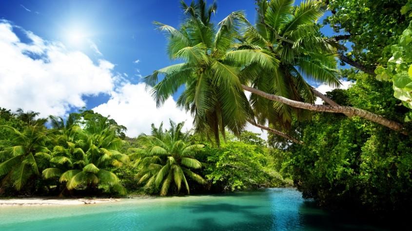 dans_les_tropics_palmiers_ocean_ciel_fantastique