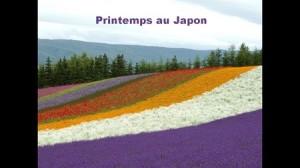 japanspring