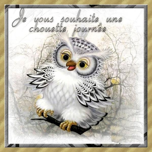 bonjourchouette