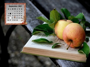 Apples_Wood