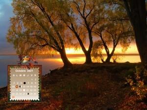 autumn-trees-on-the-lake